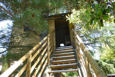 Cabane dans les arbres tt confort - Robion