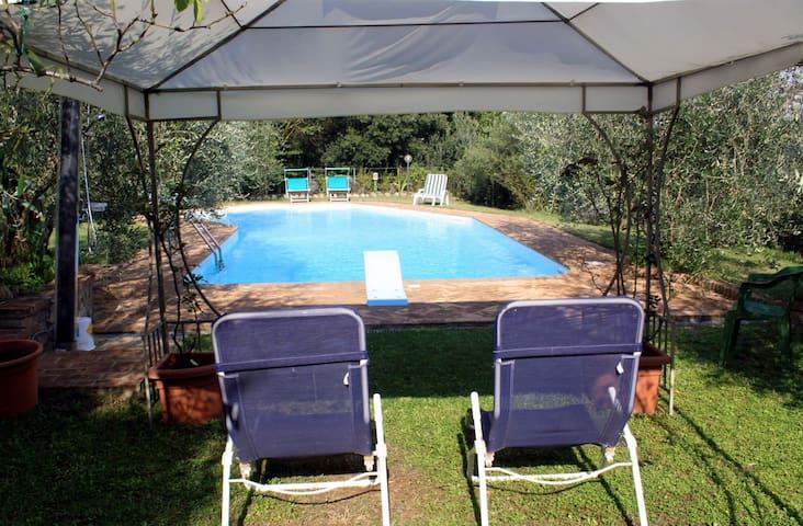 Appartamento  con splendida piscina - Casciano