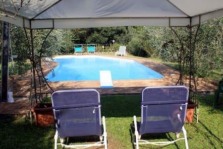 Appartamento  con splendida piscina - Appartement