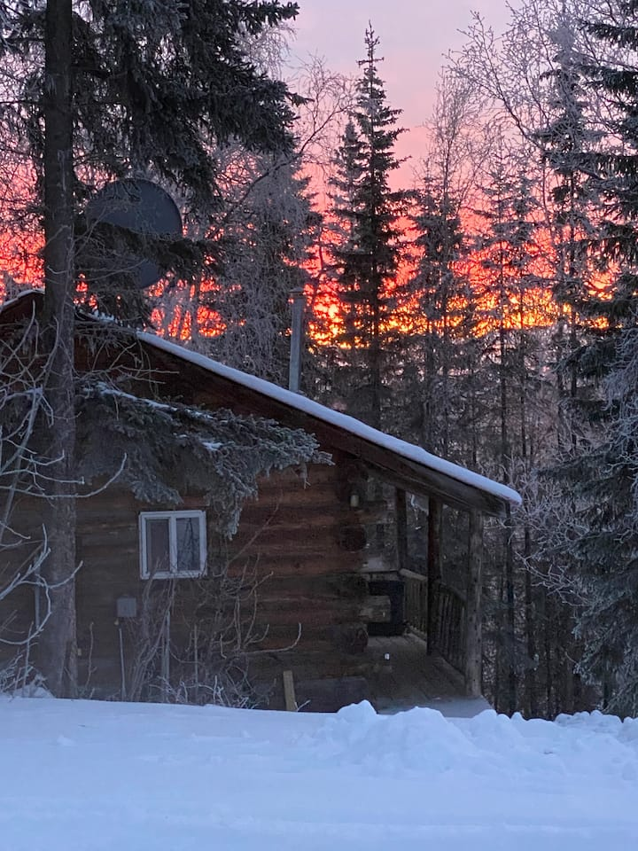 A Moose See Cabin, Close to All Alaska Adventures!