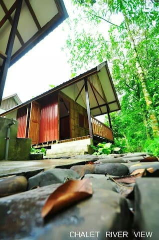 Nature stay in Borneo - Kuching - Chalet