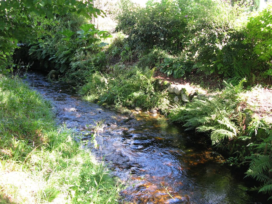 River in garden at Grovewood House