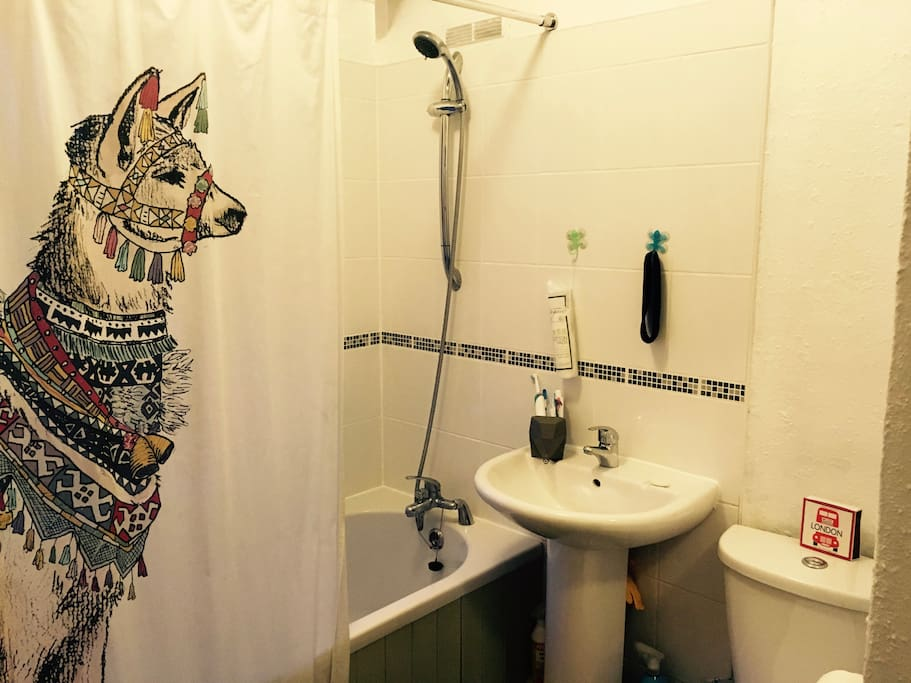 Meet our pet llama in the bathroom!