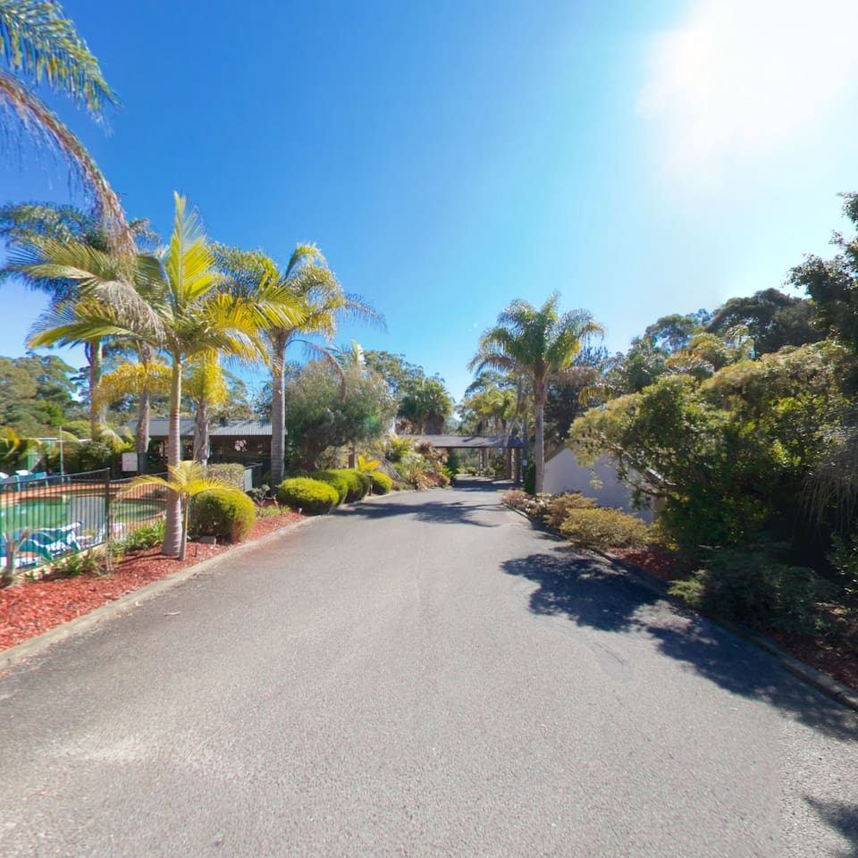 Driveway, gardens and pool