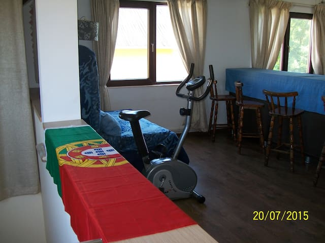 1st floor of private home - sleep 4-5 - Valu lui Traian - House