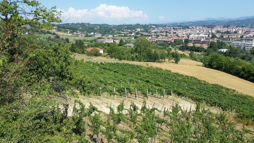 Relax tra i vigneti del Monferrato - Acqui Terme - Casa