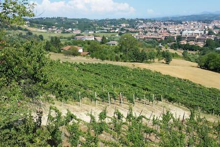 Relax tra i vigneti del Monferrato - Acqui Terme - Dům