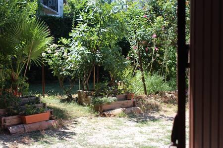 T2 40m2 avec jardin partagé