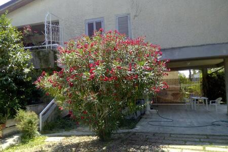 Splendida villa con giardino - Villa Rosa