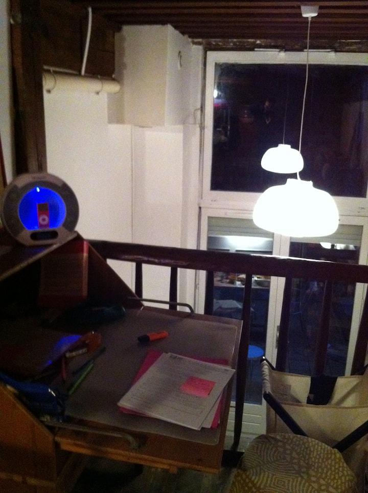 Studio 25 m2 avec lit double Lyon 1er