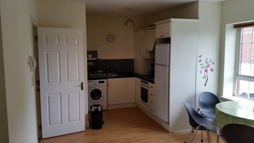 Spacious Apartment near Racecourse - Galway - Apartemen