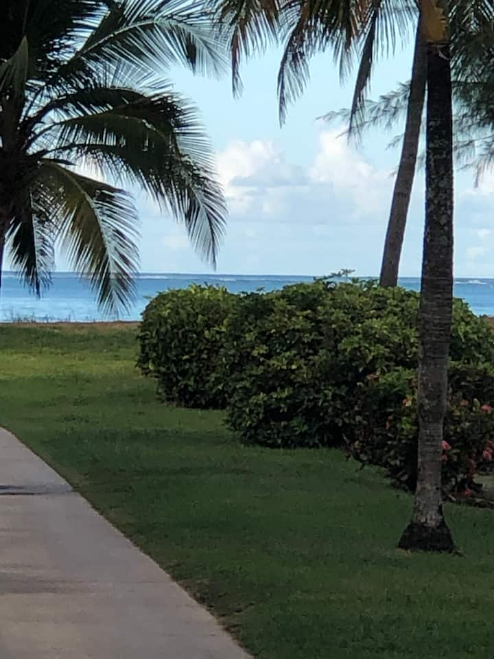 Dream/unforgettable Beach Vacations in Puerto Rico