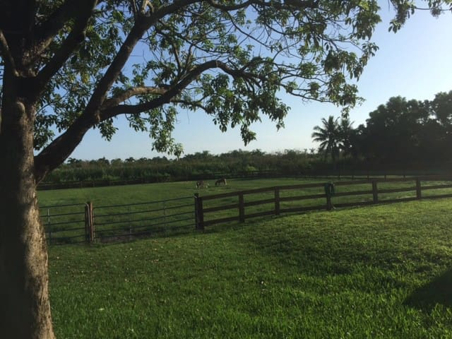Relaxing cottage at M & M Ranch - Delray Beach - Daire