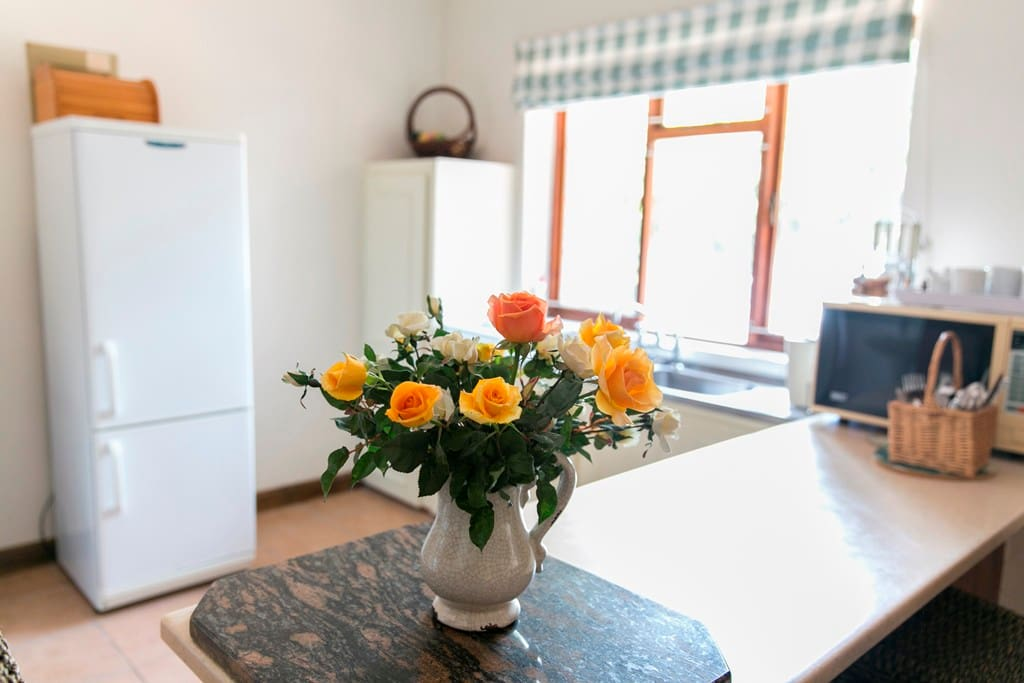 Kitchen with stove/fridge/microwave