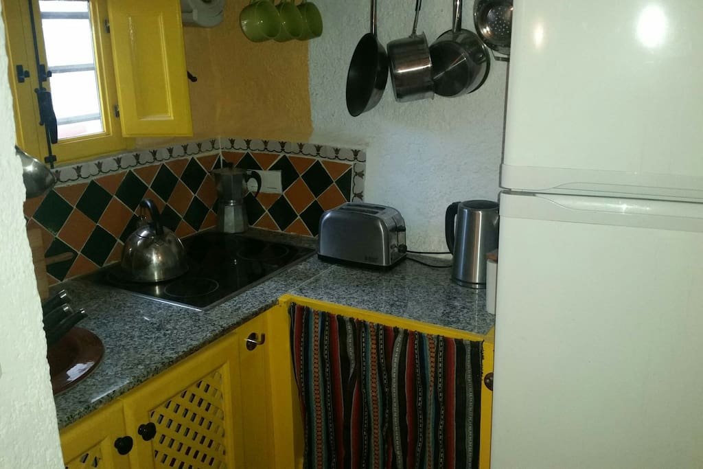 cueava gecko kitchen