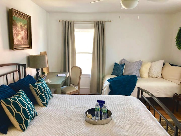 Newly renovated Apartment in historic home