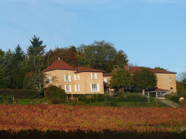 In the heart of Beaujolais with golden stones - Frontenas - Cabaña en la naturaleza