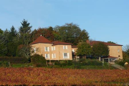 Au coeur du beaujolais des pierres dorées - Frontenas - Natur lodge
