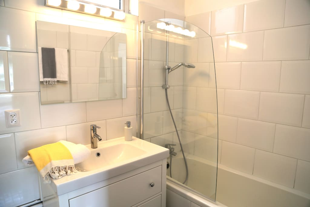Newly renovated Bathroom  in 1 bedroom apartment for rent in The Hague