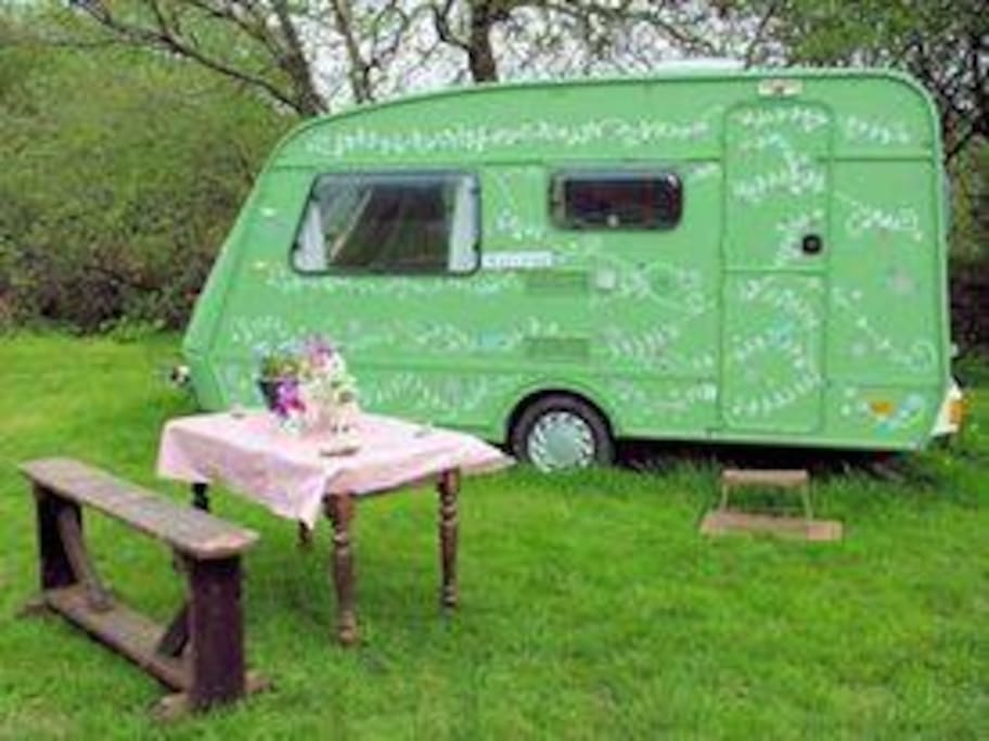 Fern the green caravan in it's own corner