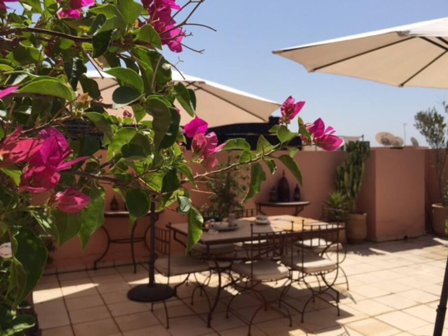 Majorelle terrasse solarium piscine appartements en - Residence les jardins de majorelle marrakech ...