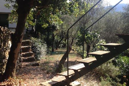 Le 20 migliori case sugli alberi in affitto a liguria su - Airbnb casa sull albero ...