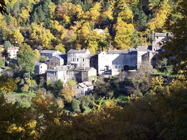 Appt. en centre Corse, Saliceto - Saliceto - 단독주택