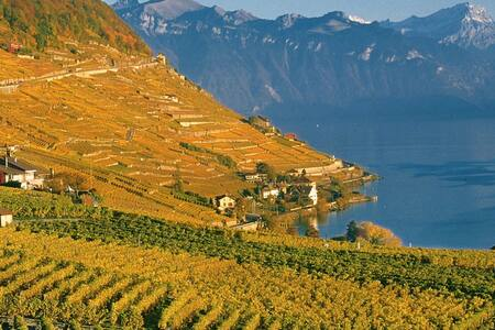 Great private Room in eco-house - Bourg-en-Lavaux - Rumah