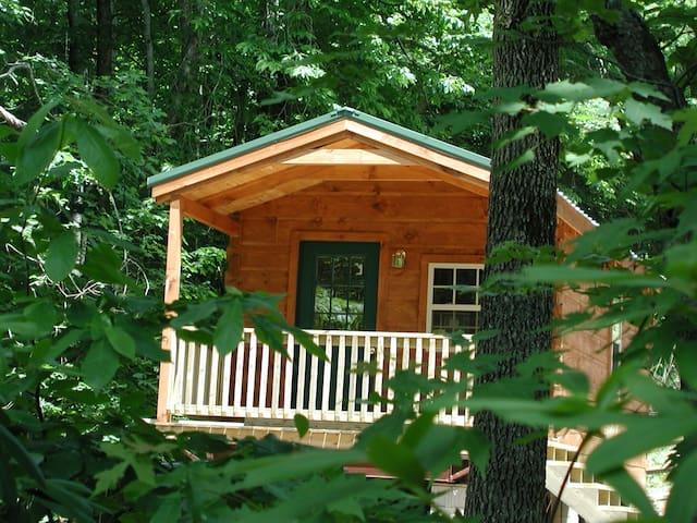 Forest Den Cabin - Hendersonville - Srub