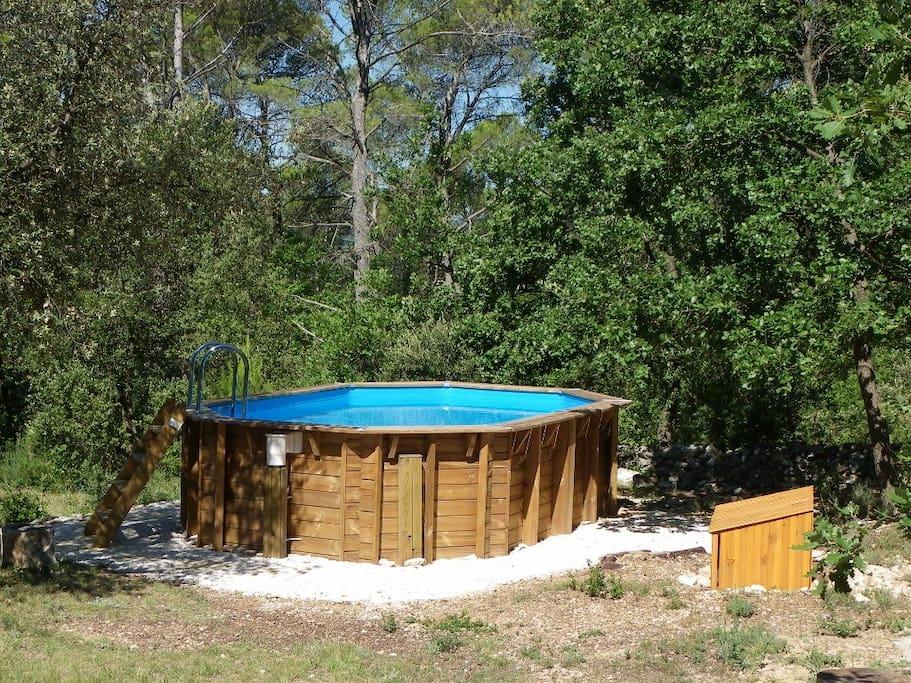 La piscine hors sol (3,20m sur 4,70m)