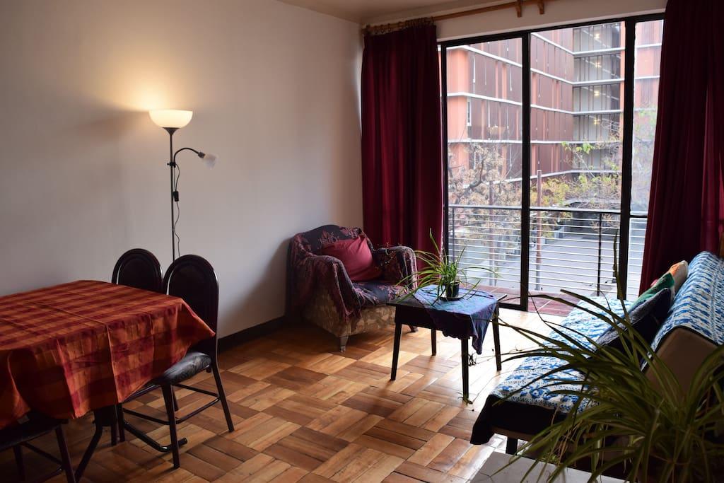 Cálido y acogedor departamento con luz natural