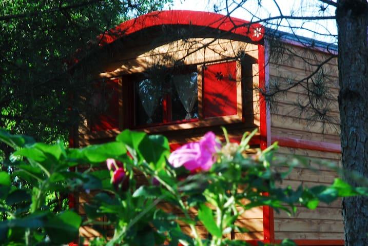 Gypsy Nature B&B Ruolotte Legno - Longue Jumelles - รถบ้าน/รถ RV