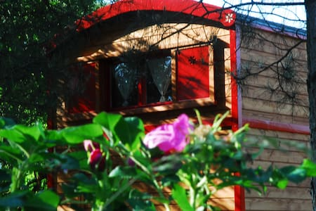 Gypsy Nature B&B Ruolotte Legno - Longue Jumelles - Camper/RV