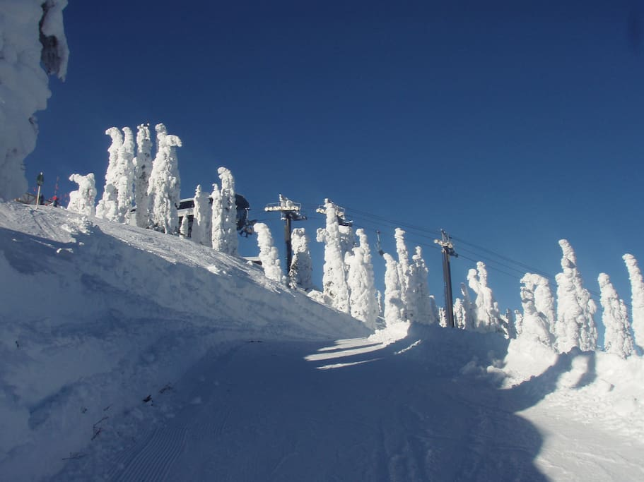 "World famous ""Snow Ghosts"" at Whitefish Mountain Resort."