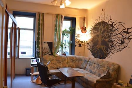 Vollmöblierte Einzimmerwohnung - Vienna