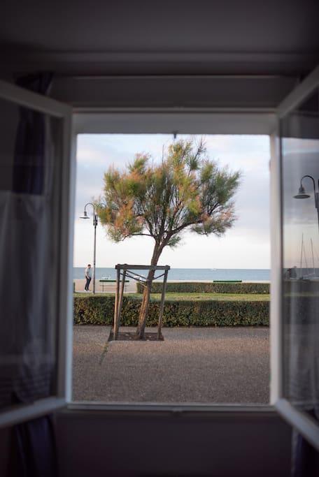 vue par la fenêtre de la chambre