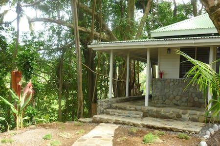Banyan stone tree house - La Plaine