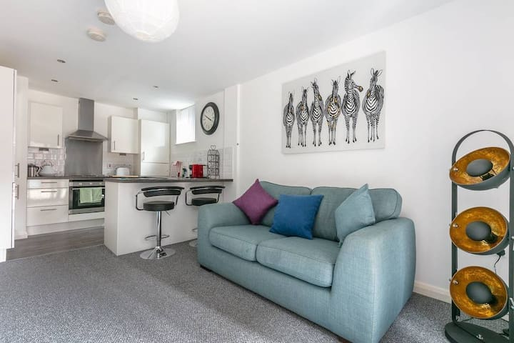 Modern 1 bedroom apartment in Belfast Center