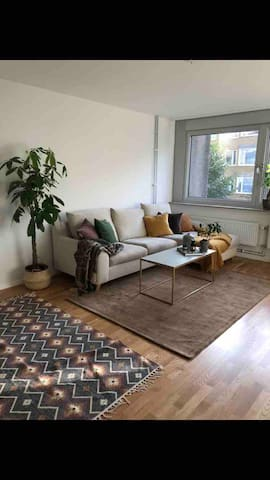 Cozy and nice flat in the city center