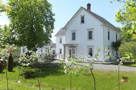 La Maison Larochelle (pricing is for all 4 rooms) - Maitland - Bed & Breakfast