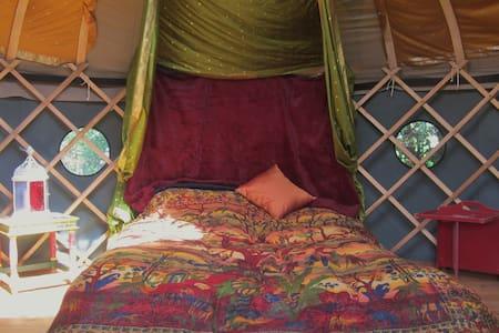 Idyllic yurt by the river - Mynachlogddu - Jurta