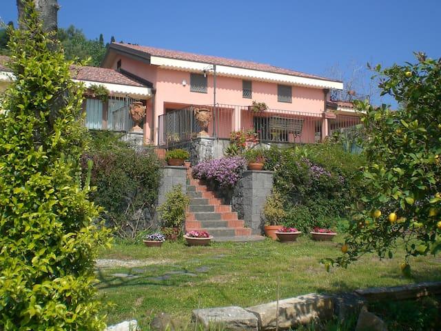 vieni al Poggio e scopri la Sicilia - Valverde - Bed & Breakfast
