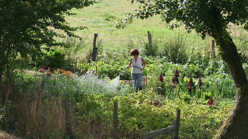 mirabelle dans son jardin