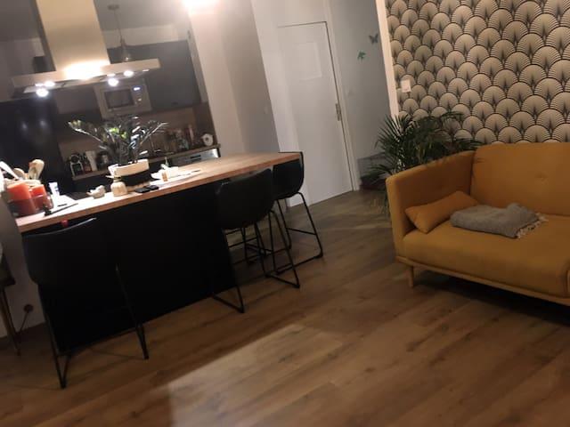 Chambre double dans appartement à Caluire