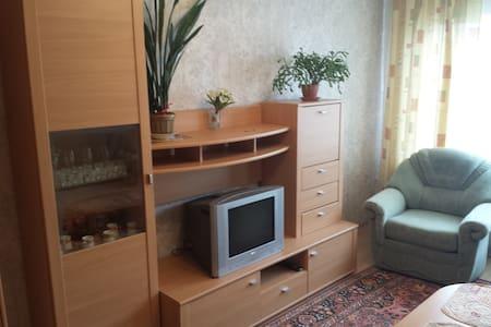 Уютная 1-комнатная квартира - Liepāja - Apartamento