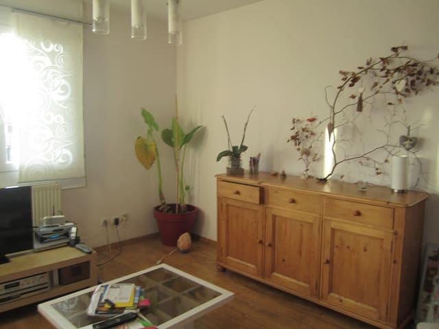 Appartement type 2 dernier étage , - Saint-Alban-Leysse - Byt