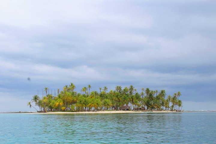 Turtle Island / Morro-dub