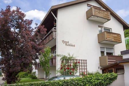 Apartment near Basel/Freiburg - Bad Bellingen