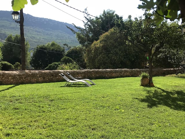 Bonica Casa Rural : jardí, piscina i llar de foc