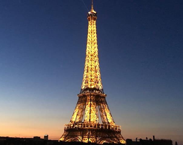 Magnifique Vue Tour Eiffel